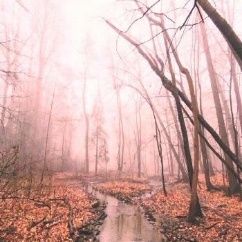 A path to nowhere -