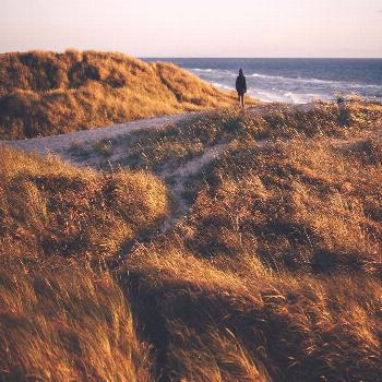 Dune walks with my sister -