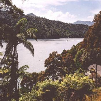 Lochmara lodge in marlborough sounds. so much to explore! there are art installations all over ...