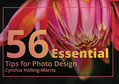 56 Essential Tips For Photo Design The photo composition