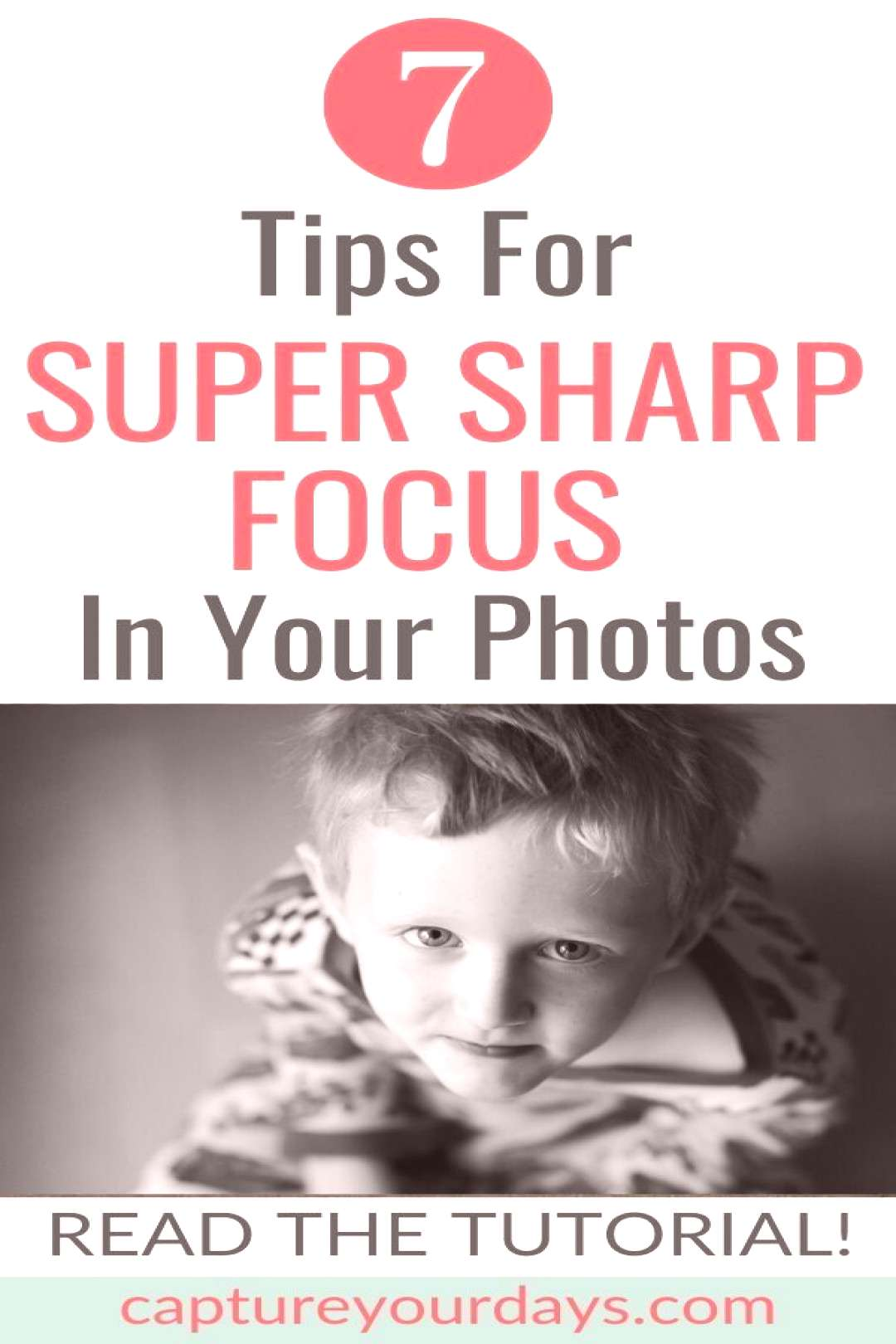 7 Tips for Super Sharp Focus In Your Photos