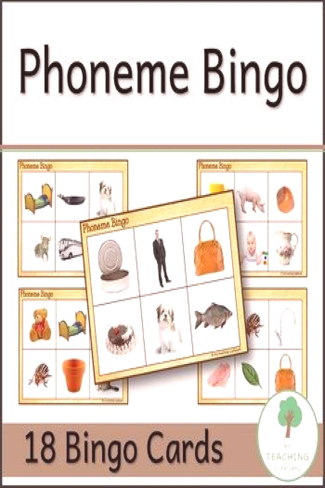 Phonemic Awareness Phoneme Bingo with photo pictures for early readers Teach phonemes so your kinde