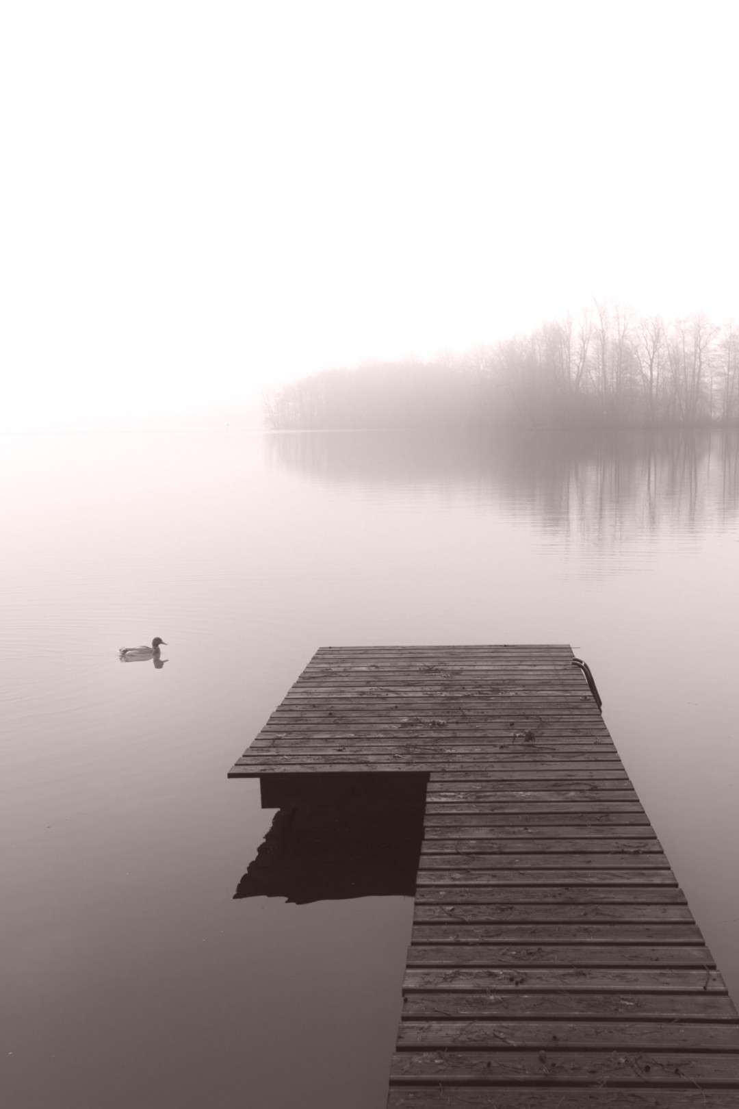 Tranquility -