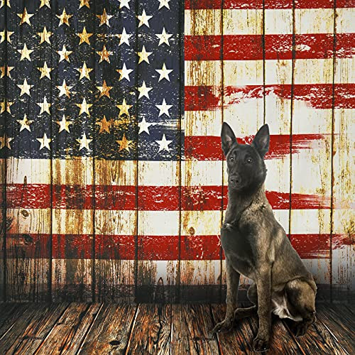 Wenmer 5 x 7ft Independence Day Backdrop Flag 4th of July